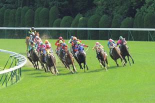 海外の競馬