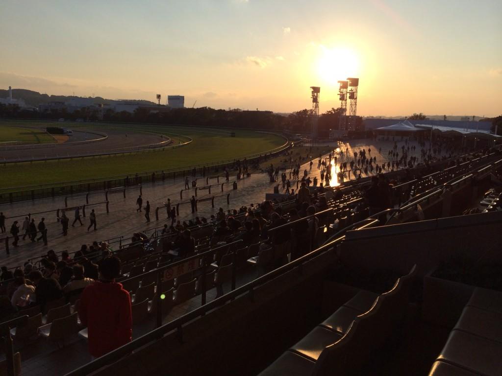 夕陽に包まれる東京競馬場