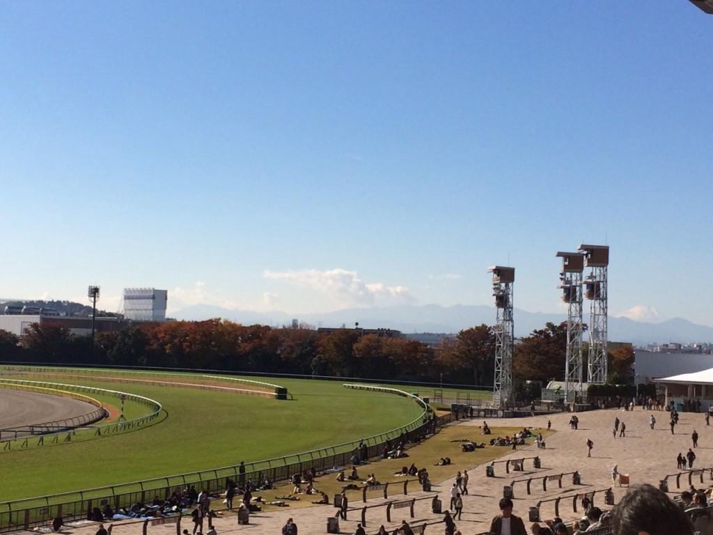 快晴の東京競馬場