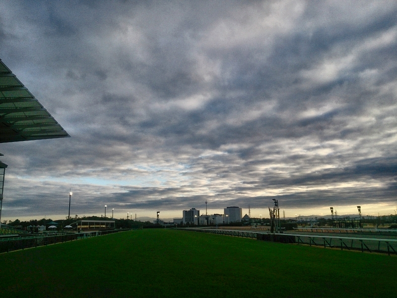 中京競馬場は冬の空模様