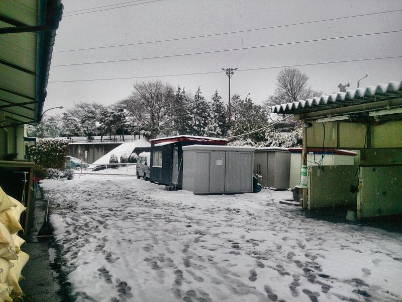 雪に包まれた高橋義忠厩舎