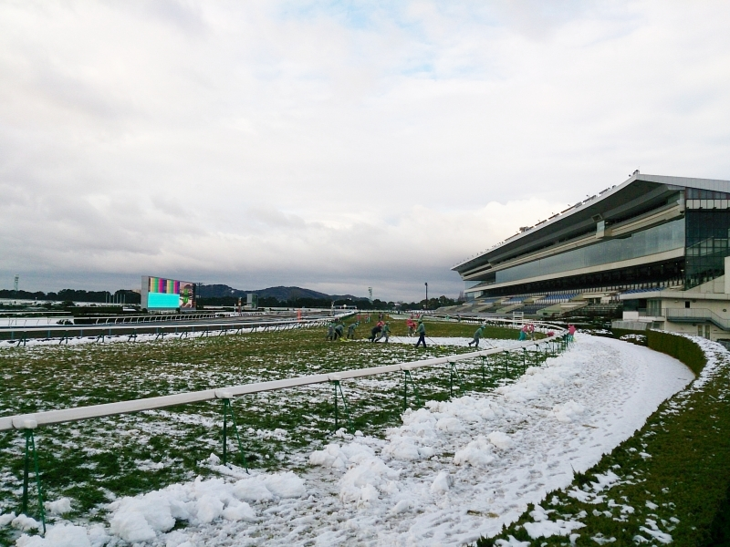 京都競馬場は朝一まだ雪が残ってました