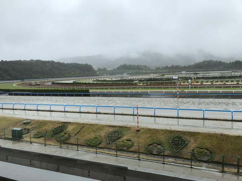 雨のトレセン。馬場に水が浮いています。