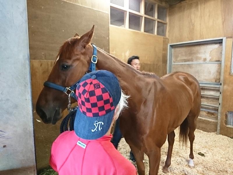獣医さんに馬体のチェックをしてもらうベルフロレゾンちゃん