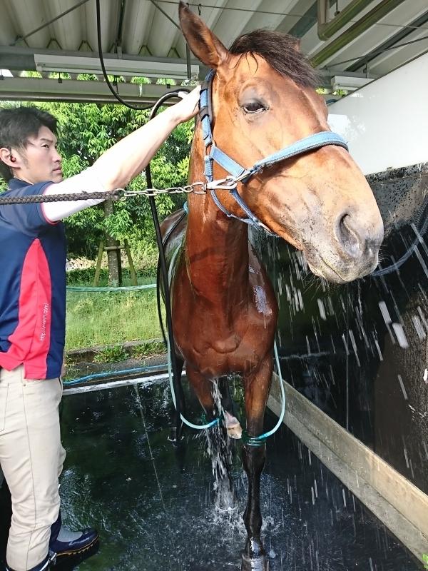 シャワーを浴びて気持ちよさそうなスノーマン君