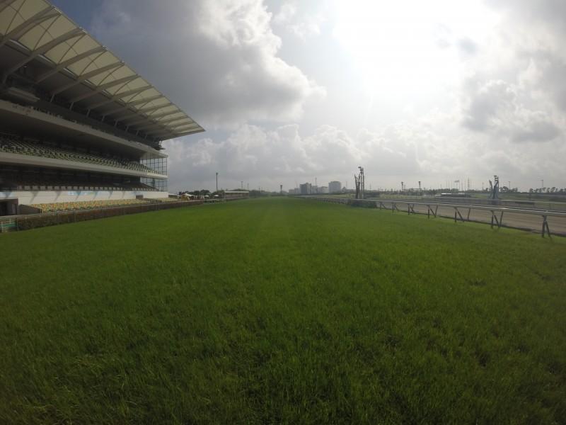 芝が綺麗な中京コース