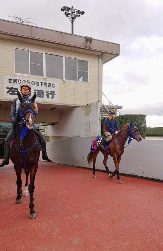 ハルノナゴリ(右)と和田ジョッキーが跨ったアレジェンス(左)