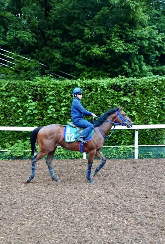 2歳馬オヌシナニモノと鮫島克駿ジョッキー