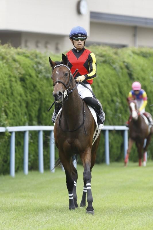 新馬勝ちのカイルアコナ