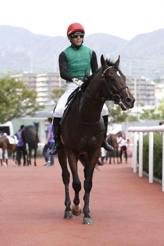 先週新馬勝ちのクリノアンカーマン。厩舎としても区切りとなる今年の20勝目となりました。